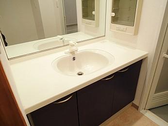大きな鏡付きの便利な独立洗面台