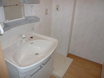 洗面脱衣所(別の部屋の写真です)