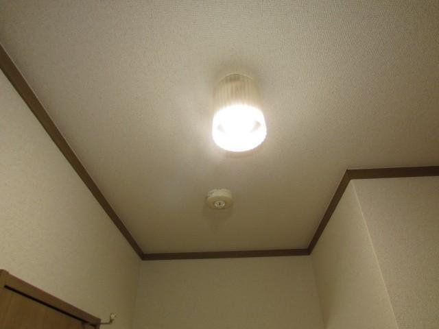 玄関側 照明