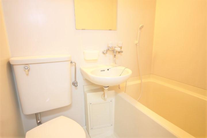 洗面台、シャワー、鏡付