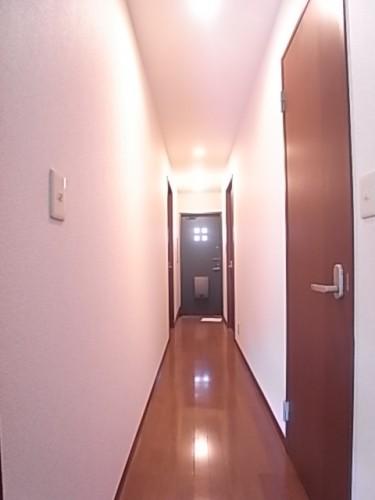 廊下があるだけで物件全体にゆとりが出ます!幅82.2×奥560×高240