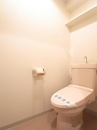 トイレにはペーパー類などがストックできる棚もございます。