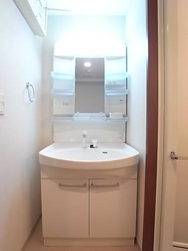 ボールが大きく使いやすいシャワー付き独立洗面台。