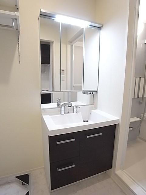大きな三面鏡のあるシャワー付き独立洗面台!