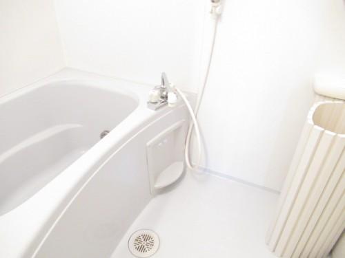 綺麗で広めの浴室