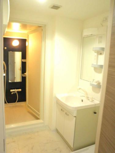 独立洗面台&脱衣所! シャワー付洗面台です。