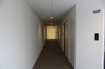 内廊下は、まるでシティーホテルのようです!