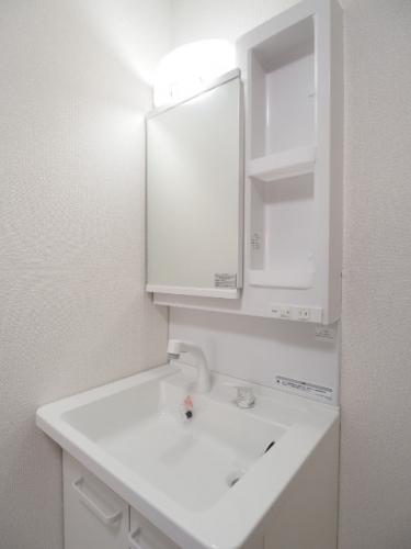 シャワードレッサー機能付きの洗面台