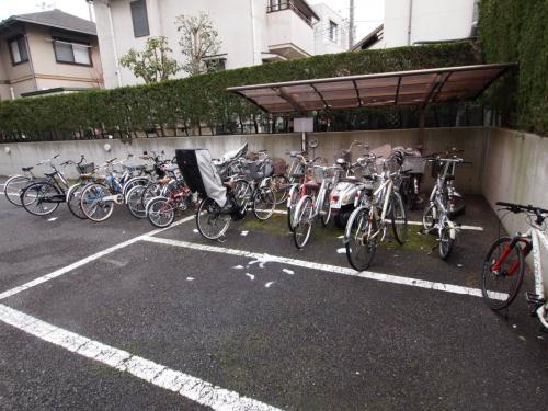 自転車はしっかり置けます。