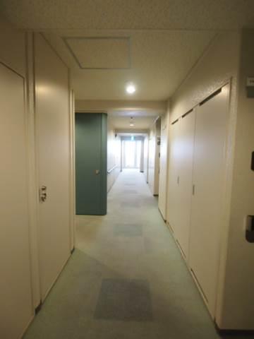 共用廊下は広くてお引越しもしやすいです。