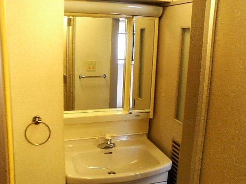 独立洗面台は鏡も大きくて使いやすい
