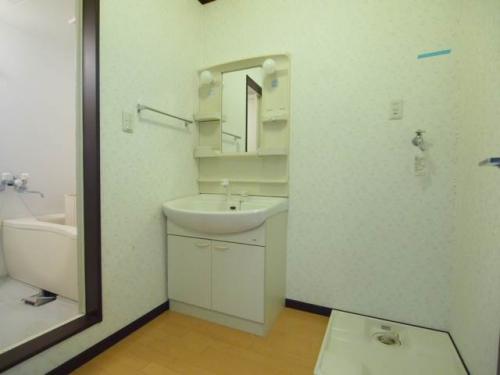 脱衣スペースのある洗面所