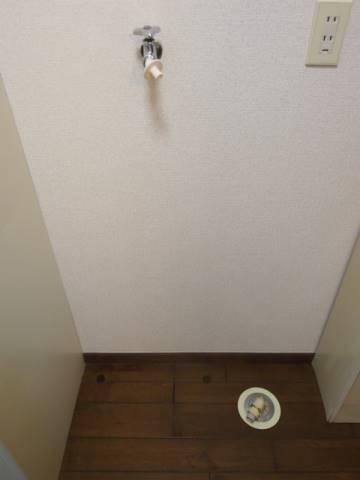 室内に洗濯機が置けるのはうれしいポイント