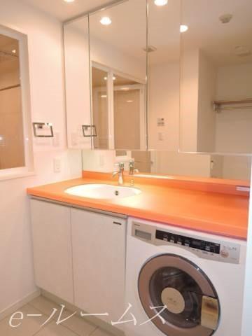 独立洗面台・ドラム式洗濯機付