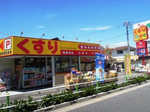 どらっぐぱぱす板橋徳丸店