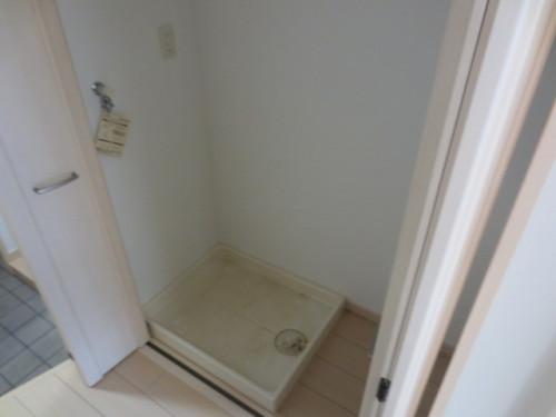 洗濯機置場(別の部屋の写真です)