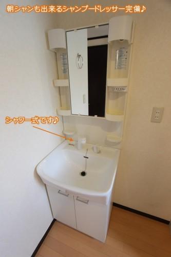 洗面化粧台も完備で便利