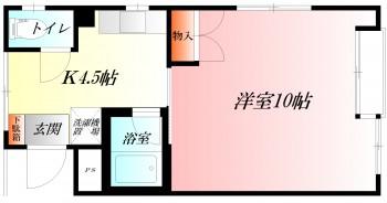 ◆窓開口の大きい明るく広々とした洋室10帖◆