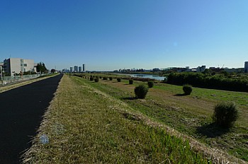 多摩川まで徒歩5分!ジョギングやサイクリングをされる方におすすめです☆