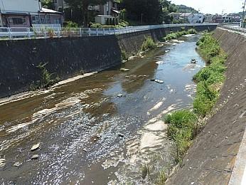 物件近く・鶴見川