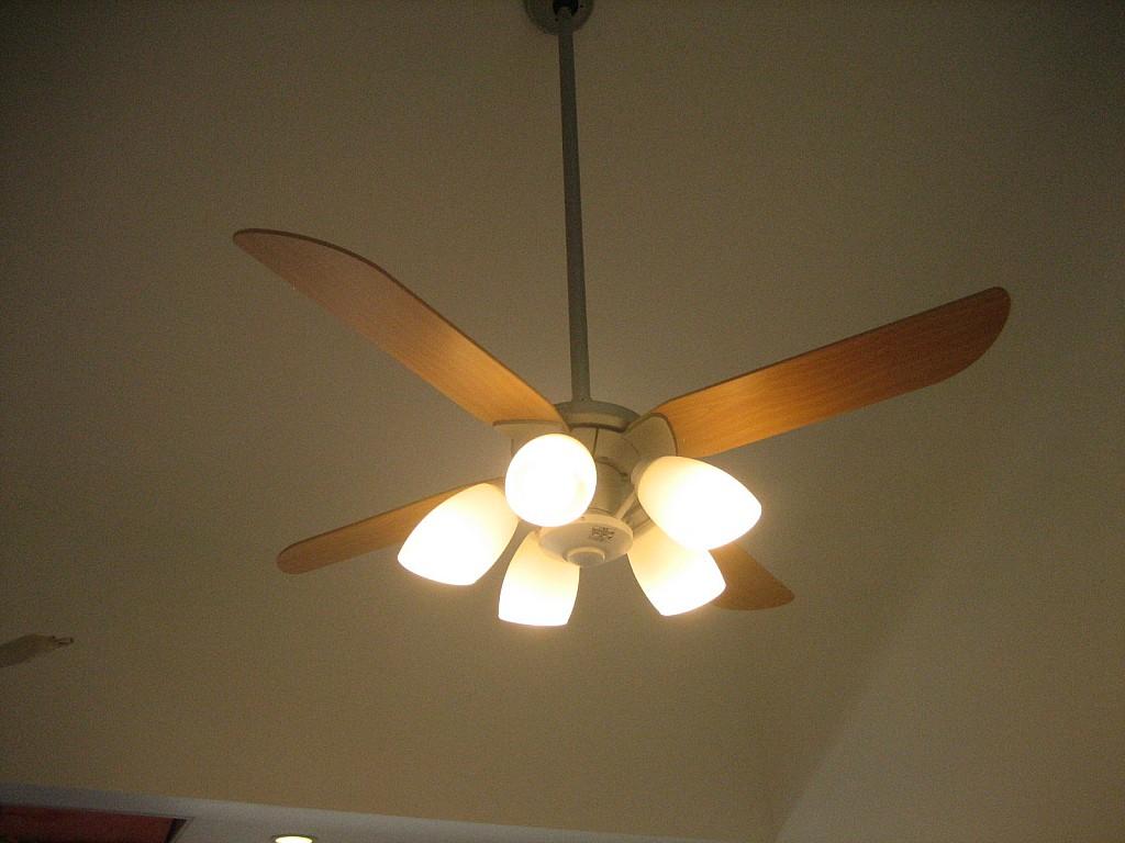 リビング天井ファン式照明!