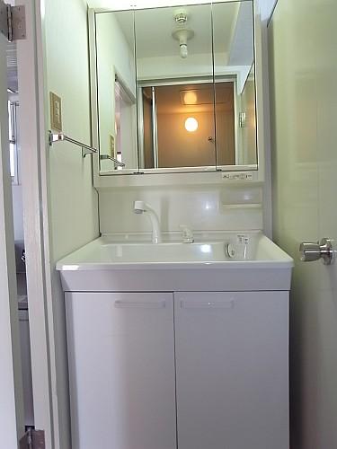 シャワードレッサー洗面台