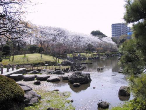 隅田公園:200m